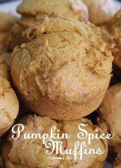 3 Ingredient Pumpkin Spice Muffins Recipe - Tammilee Tips