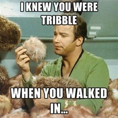I knew you were Tribble when you walked in... #StarTrek