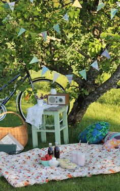 old fashioned picnic-like pennants, old radio, bicycle, basket, pillows