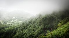 Rabican7 posted a photo:  Another overcast day in Hawaii (no big news here, really!) and I was driving from Honolulu towards the north shore of Oahu. I took Pali Highway and stopped briefly at the Nu'uanu Pali lookout to enjoy the view of the valley. Quite a historic site as this is where one of the bloodiest battles in Hawaiian history took place. An army of more than 10K warriors out of Island of Hawaii under Kamehalameha I conquered sequentially the islands of Maui and Molokai and this is…