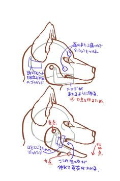 Cosplay Tutorial, Cosplay Diy, Centaur Costume, Bunny Paws, Fursuit Tutorial, Fursuit Head, Scary Dogs, Wings Of Fire Dragons, Christian Tattoos