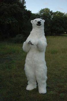 costume bear | bear suit bear costume bear puppet animatronic bear