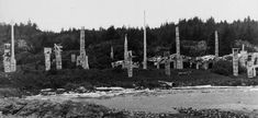 View of the mortuaries clustered near the south end of the village. The houses and their poles further to the south (left) were badly burned in a village fire and were not focused on during early visits. La Rive, Houses, Fire, Outdoor, North West, Homes, Outdoors, Outdoor Games, The Great Outdoors