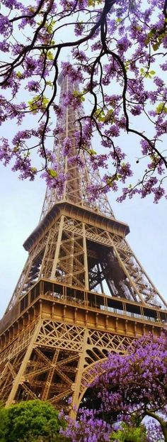Spring in Paris, France