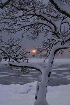 Winter Sunset, Lauttasaari, Finland photo via sheila. I really want to go to a winter wonderland Winter Szenen, Winter Sunset, Winter Love, Winter Magic, Winter Night, Winter White, Winter Trees, Snowy Trees, Deep Winter
