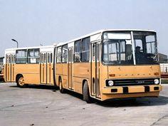 Nice Bus, Back In The Ussr, Busa, Camper Conversion, Commercial Vehicle, Public Transport, Motorhome, Motor Car, France