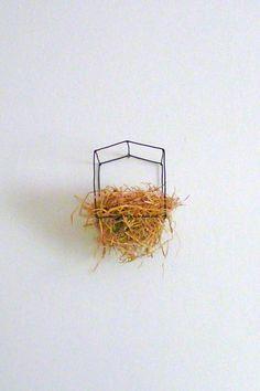 flavia decarli - paglia e filo di ferro - nest (2009) little art house little house