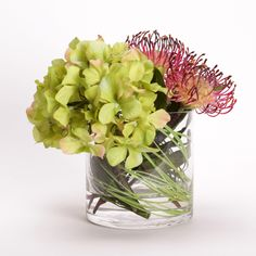 2203 Green Hydrangea & Protea in Glass 9x8