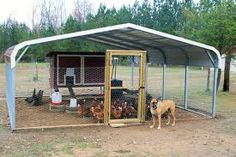 Carport Coops by American Steel:Can be found on Backyardchickens.com (by Jim White)