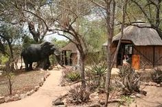 Umlani - another K2C lodge committed to the principles of Responsible Tourism