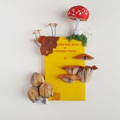 Common Fungi with embroidered elements by artist Kate Kato