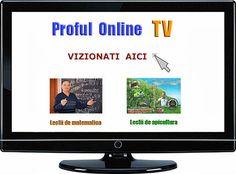 Proful Online - profesor Ioan URSU - Google: profu online - Tel: 0722786515 Tv, Google, Youtube, Beekeeping, Television Set, Youtubers, Youtube Movies, Television