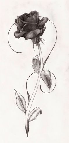 This is the kind of rose I want on my arm with a key on a small chain wrapped around it
