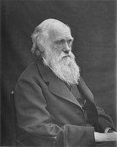On this date–November 1859 Charles Darwin's On the Origin of Species, was published. Its full title was On the Origin of Species by Means of Natural Selection, or the Preservation of Favoured Races in the Struggle for Life. Charles Darwin, Robert Darwin, Origin Of Species, Theory Of Evolution, Special People, Atheist, Change The World, Science And Technology, Famous People