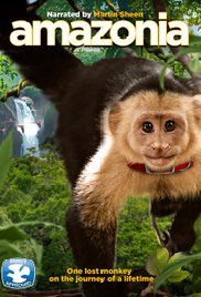 After a plane crash, Saï, a capuchin monkey born and raised in captivity, finds himself alone and lost in the wilderness of the Amazon jungle.