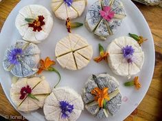 Drome regional chevres or goat cheeses