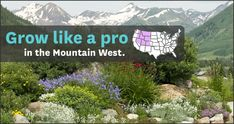 Hot and cold temperatures, high elevations, drying winds -- those are just some of the conditions that gardeners in the Mountain West and High Plains have to contend with. The right plants and gardening methods can help them