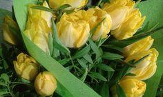 Golden Times: Våren är här!
