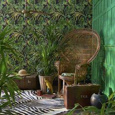 A funny green jungle leaf wallpaper design with mischievous monkeys, . A funny green jungle leaf wallpaper design with mischievous monkeys, . Buy Wallpaper Online, Wallpaper Uk, Designer Wallpaper, Wallpaper Toilet, Tropical Wallpaper, Botanical Wallpaper, Rattan, Monkey Wallpaper, Animal Wallpaper