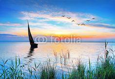 vacaciones en el mar de colores    here's the cattails he wanted
