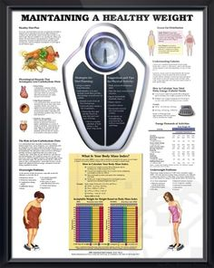Maintain Healthy Weight anatomy poster briefly describes healthy diet plan, provides detail on hazards of low-carb diets. Nutrition for doctors, nurses and registered dietitians.