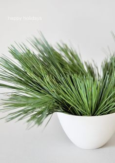 evergreens in a white bowl.  It doesn't get much simpler than that.