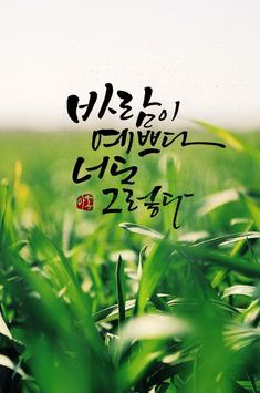 봄. . 봄. . 봄. . 봄을 기다립니다. Brush Script, Caligraphy, Famous Quotes, Art Pictures, Cool Words, Poems, Clip Art, Messages, Lettering