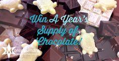 Motezuma-Chocolate-Competition-Scroller