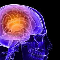 7 Foods That Boost Your Brainpower