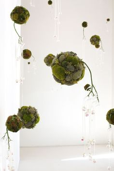 Beautiful. Could I do it with succulents and moss? I have the perfect place to hang them...