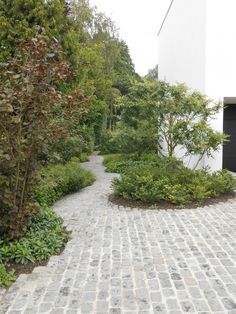 stone setts form a curving path through small trees, shrubs and ground cover Side Garden, Balcony Garden, Garden Paths, Back Gardens, Small Gardens, Outdoor Gardens, Modern Landscaping, Outdoor Landscaping, Detail Architecture