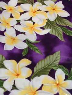 Maui fabric for baby ring sling. Put in your request@ coutureslingzz.con Ring Sling, Baby Sling, Maui, Fabric, Tejido, Tela, Cloths, Fabrics, Tejidos