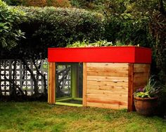 rectangular coop with red, grassy roof you can use as garden