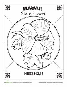 Hawaii State Map Outline Coloring Page Hawaiian