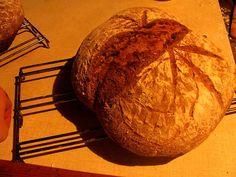Vady chleba pohledem laika