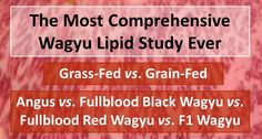 """The long-awaited American Wagyu Association Lipid Study is finally under way. It starts with asking Wagyu breeders to """"nominate"""" steers to the feeding program. Feeding Program, Wagyu Beef, Long Awaited, Charcuterie, Beef Recipes, Texas, Study, Garden, Meat Recipes"""
