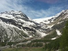 Climb up to the top of the Alps with the famous Bernina Express. Bernina Express, Alps, Day Trips, Tours, Travel, Viajes, Destinations, Traveling, Trips