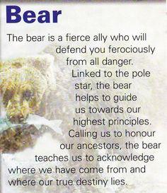 Your Animal Spirit Guide for May 12 is The Bear – Witches Of The Craft® Bear Spirit Animal, Spirit Bear, Animal Spirit Guides, Bear Animal, Animal Meanings, Animal Symbolism, Animal Reiki, Spiritual Animal, Bear Totem