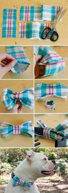 Cats Toys Ideas - Sewing a bow tie for your dog's collar is a great project for sewing beginners! - Ideal toys for small cats Dog Crafts, Sewing Crafts, Sewing Projects, Diy Projects, Sewing Toys, Diy Dog Collar, Bow Tie Collar, Dog Collars, Tie Bow