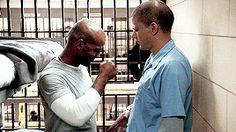 Prison Break Gifs   It's prison, yo! — Michael's my best friend. If he's alive, if he's...