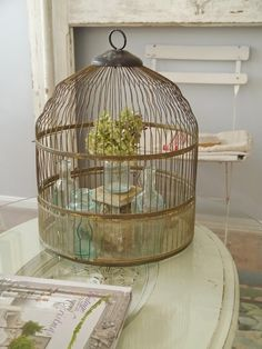 beautiful cage with vintage bottles