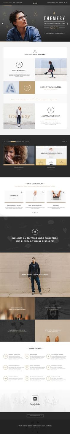 Themesy – Responsive Multi-Purpose WordPress Theme