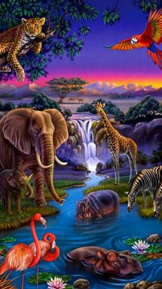 Jungle friends at Midnight Party hour! Beautiful Nature Pictures, Beautiful Nature Wallpaper, Beautiful Birds, Animals Beautiful, Amazing Nature, Animal Paintings, Animal Drawings, Jungle Animals, Cute Animals