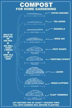 Composting for home gardens. A Garden resource at chasingdelicious.com. Infographic by @Russell van Kraayenburg.
