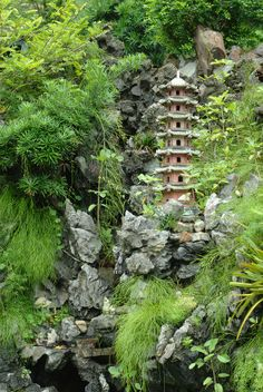 DIY : Create a Feng Shui Garden for Health, Wealth, and Happiness