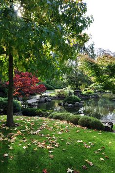 London - Holland Park