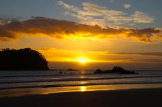 Mount Maunganui, New Zealand Beautiful Places In The World, Most Beautiful, Mount Maunganui, New Zealand Houses, Fern, Wander, Lust, Travel, Outdoor