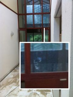 Real Ghost Pictures: A Face In The Glass