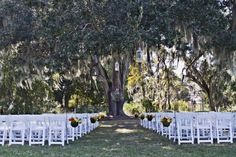 Outdoor Wedding In Florida