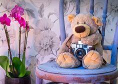 Hommage an die analoge Fotografie oder 5 Gründe, warum Analogfotografie schön ist
